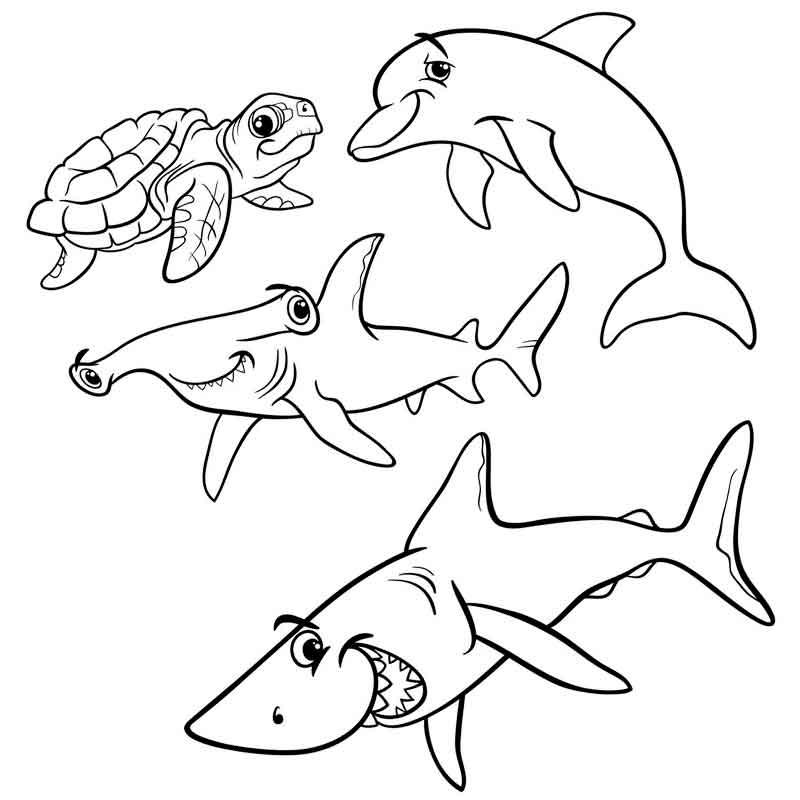 раскраска слоновая акула наслаждаются жизнью несмотря