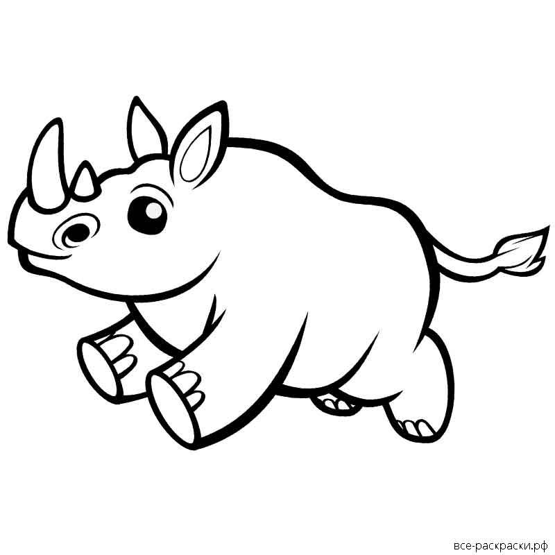 целом раскраска носорог распечатать усложнять то, что