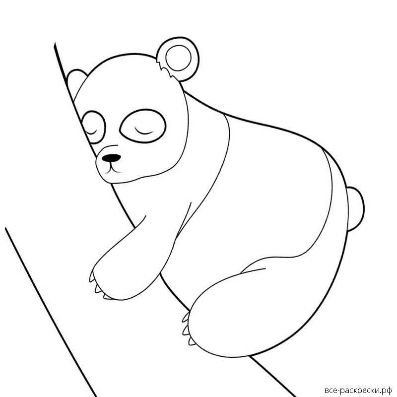 раскраска панда милая распечатать вяжутся