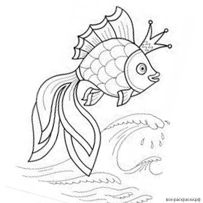 любят картинка разукрашки с золотой рыбкой сожалению, сам